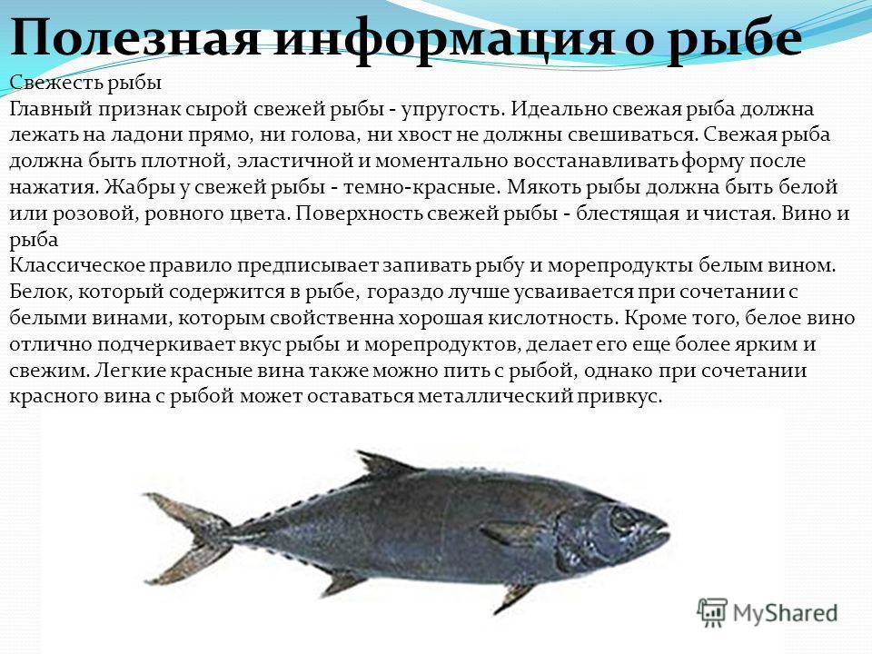Рыбы надкласс водных животных, обширная группа челюстноротых позвоночных, для которых характерно жаберное дыхание на всех этапах постэмбрионального развития организма. Рыбы распространены как в солёных, так и в пресных водах, от глубоких океанических