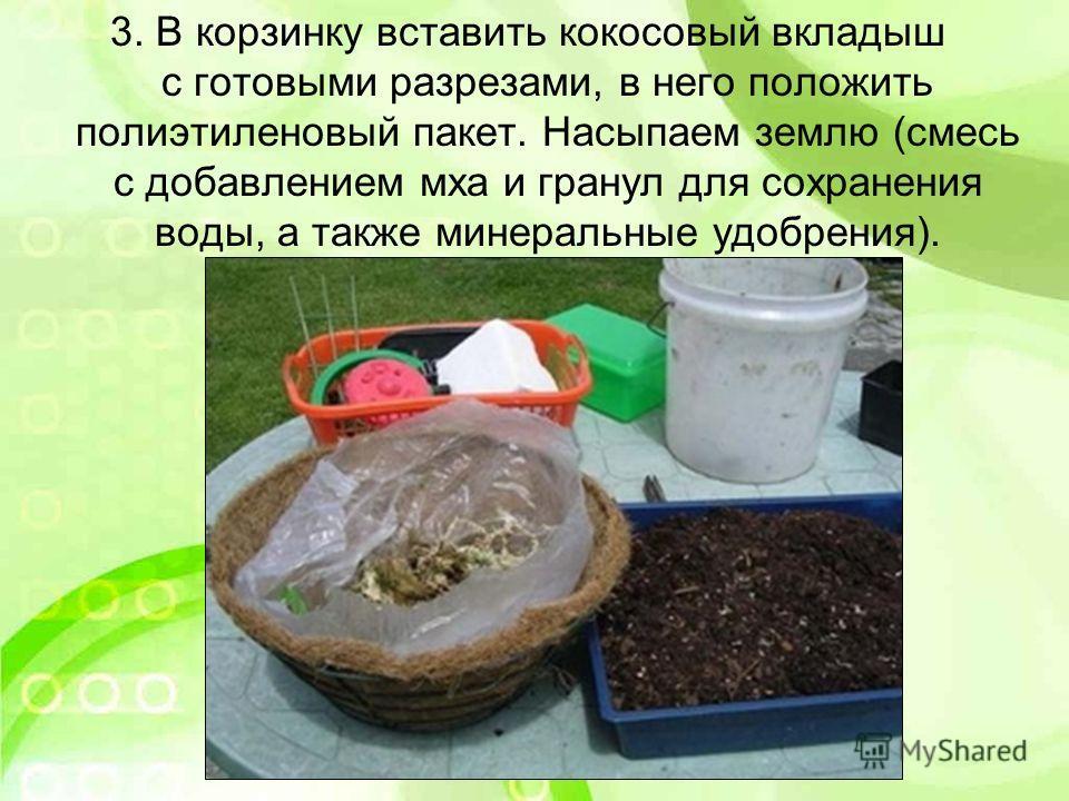 3. В корзинку вставить кокосовый вкладыш с готовыми разрезами, в него положить полиэтиленовый пакет. Насыпаем землю (смесь с добавлением мха и гранул для сохранения воды, а также минеральные удобрения).