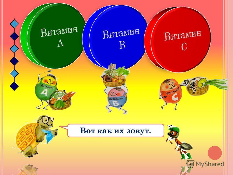 Овощей и фруктов нужно есть как можно больше, потому что в них много витаминов и других полезных веществ. Без витаминов человек болеет! Давайте познакомимся с братьями-витаминами.