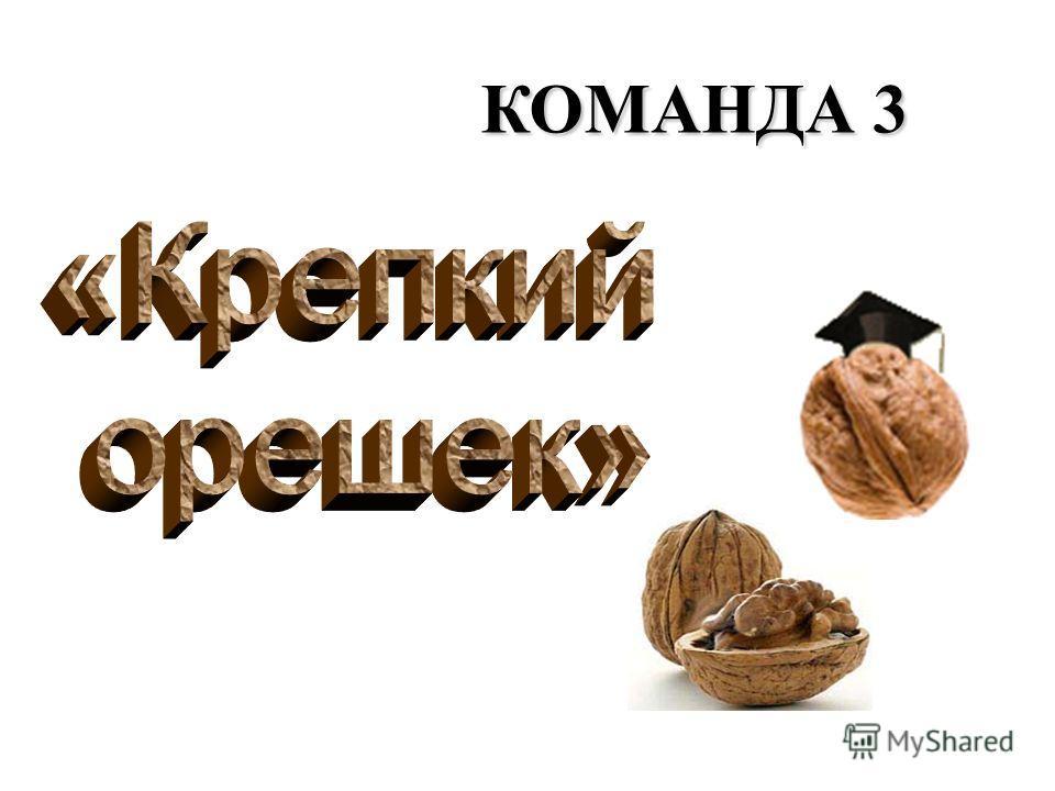КОМАНДА 2