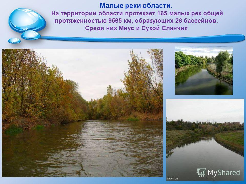 Малые реки области. На территории области протекает 165 малых рек общей протяженностью 9565 км, образующих 26 бассейнов. Среди них Миус и Сухой Еланчик