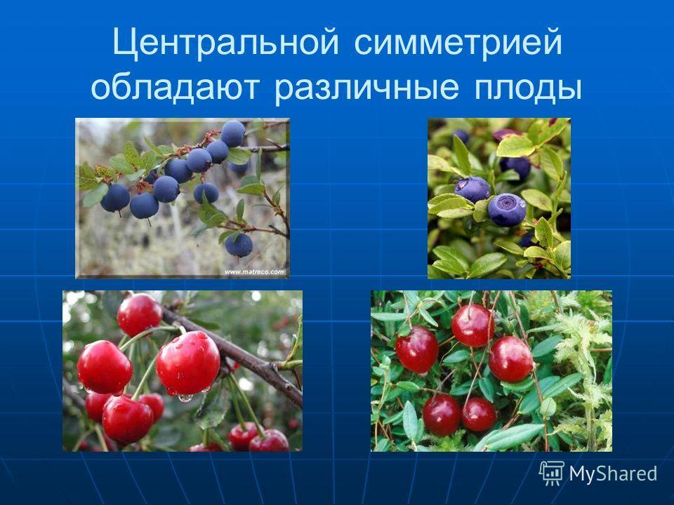 Центральной симметрией обладают различные плоды