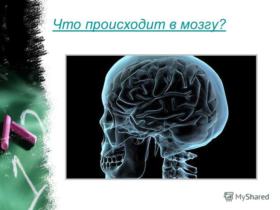 Деятельность мозга и питание