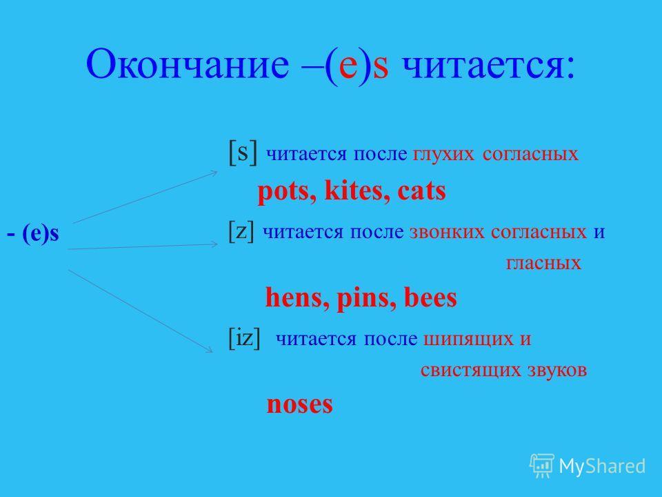 Как сказать, что предметов много? Посмотри на картинки и прочитай слова a beebees a pot pots a kite kites