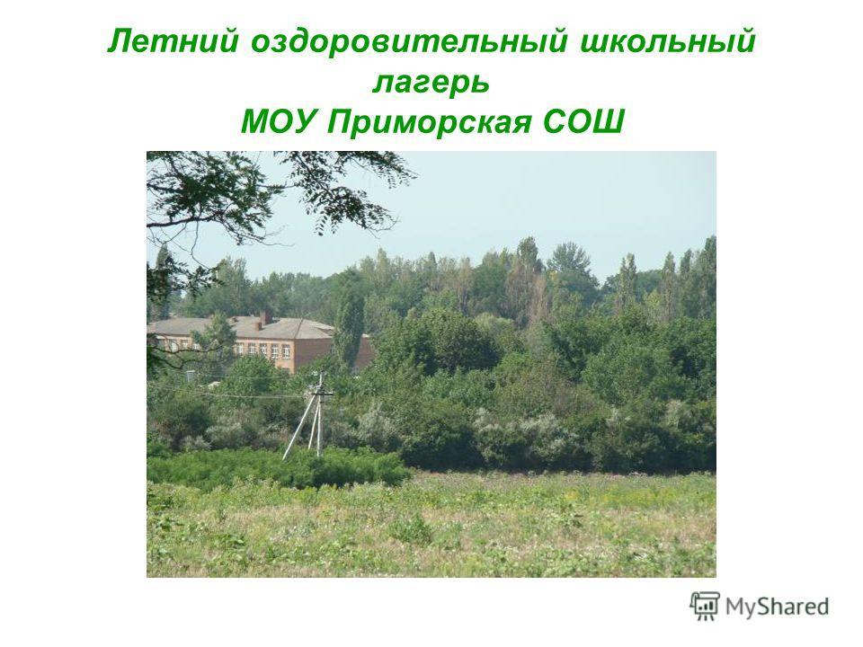 Летний оздоровительный школьный лагерь МОУ Приморская СОШ