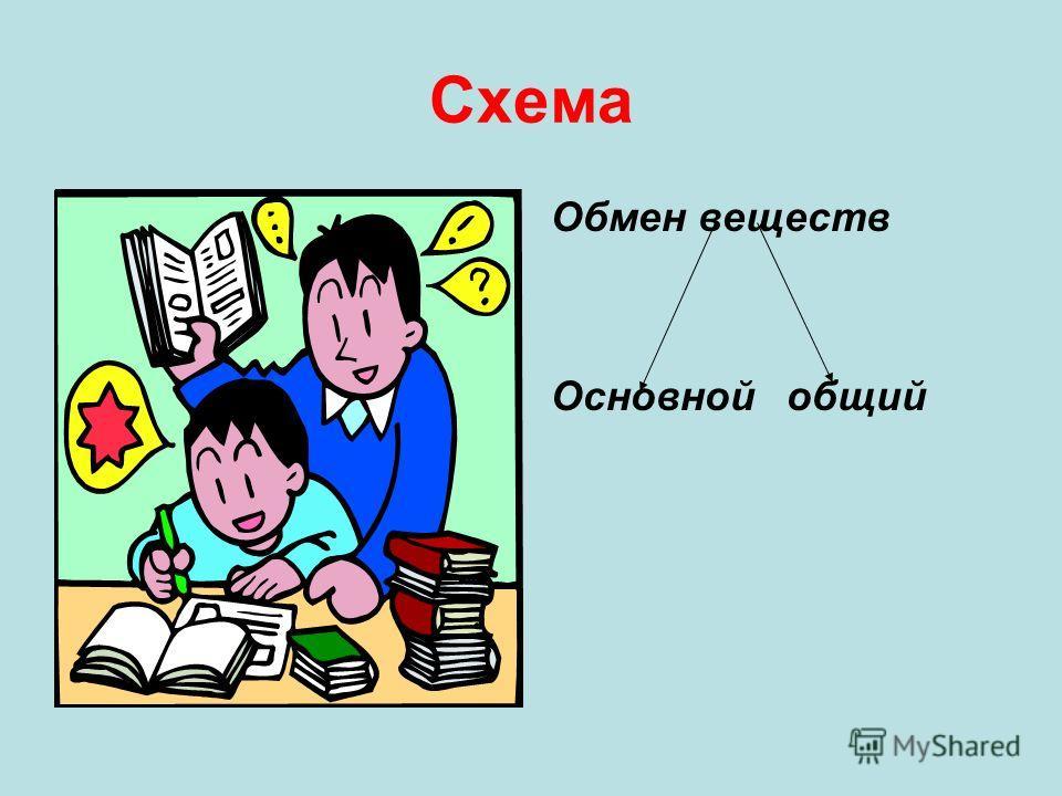 Схема Обмен веществ Основной общий