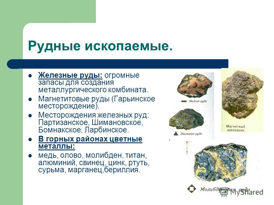 Рудные ископаемые. Железные руды: огромные запасы для создания металлургического комбината. Магнетитовые руды (Гарьинское месторождение). Месторождения железных руд: Партизанское, Шимановское, Бомнакское, Ларбинское. В горных районах цветные металлы: