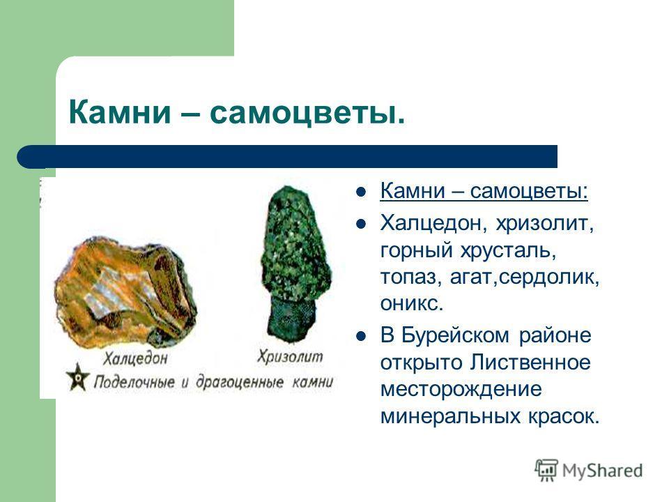 Камни – самоцветы. Камни – самоцветы: Халцедон, хризолит, горный хрусталь, топаз, агат,сердолик, оникс. В Бурейском районе открыто Лиственное месторождение минеральных красок.