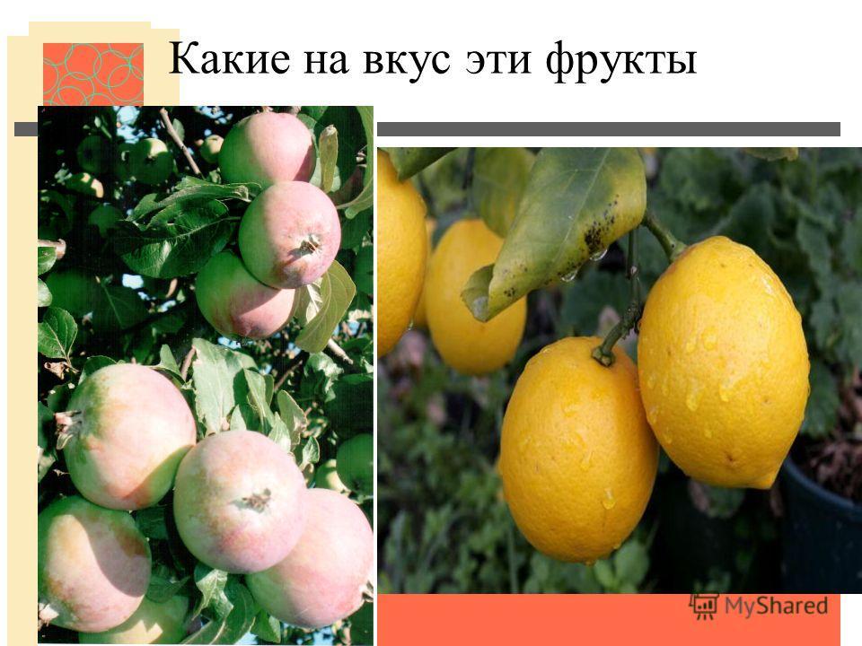 Какие на вкус эти фрукты
