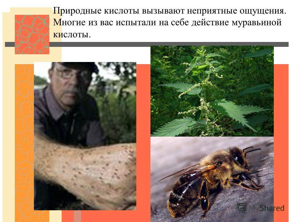 Природные кислоты вызывают неприятные ощущения. Многие из вас испытали на себе действие муравьиной кислоты.