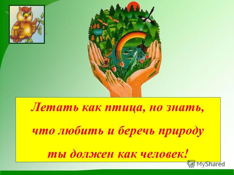 Летать как птица, но знать, что любить и беречь природу ты должен как человек!
