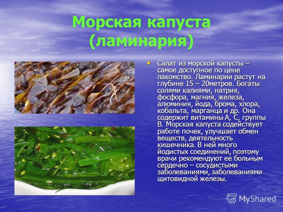 Морская капуста (ламинария) Салат из морской капусты – самое доступное по цене лакомство. Ламинарии растут на глубине 15 – 20метров. Богаты солями калиями, натрия, фосфора, магния, железа, алюминия, йода, брома, хлора, кобальта, марганца и др. Она со