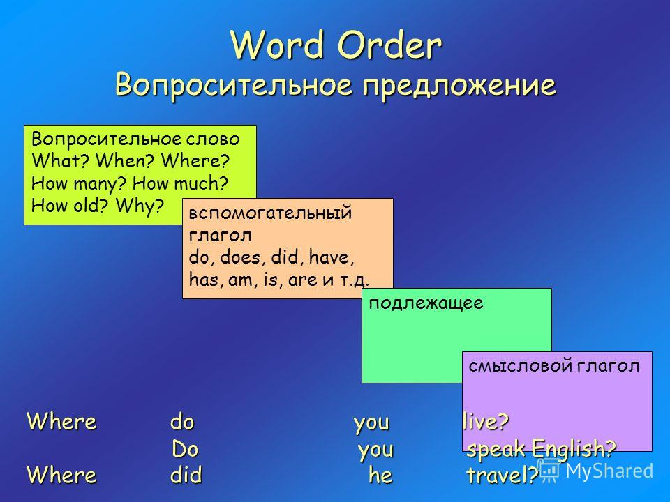 Word Order Вопросительное предложение Вопросительное слово What? When? Where? How many? How much? How old? Why? вспомогательный глагол do, does, did, have, has, am, is, are и т.д. подлежащее смысловой глагол Where do you live? Do you speak English? D