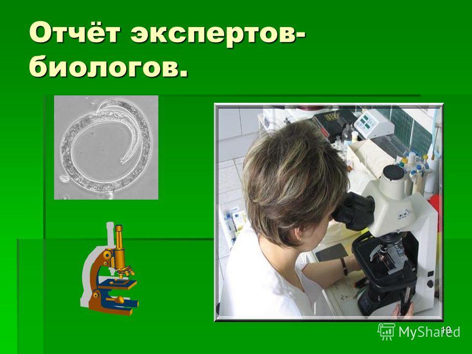10 Отчёт экспертов- биологов.
