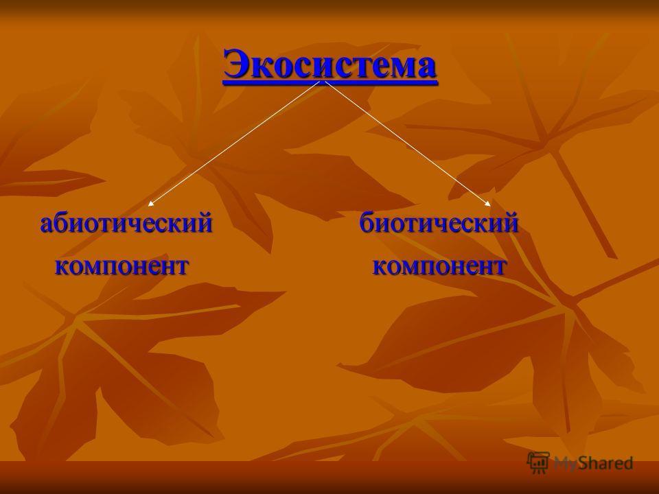 Экосистема абиотический биотический компонент компонент компонент компонент
