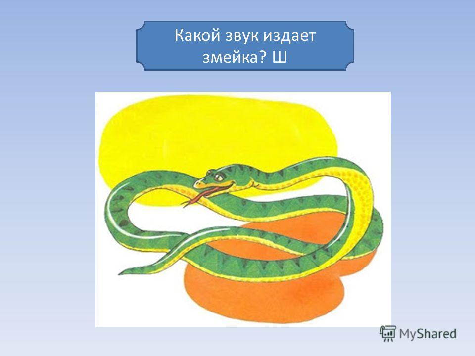 Какой звук издает змейка? Ш