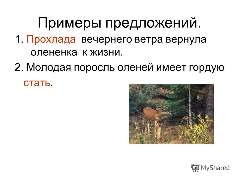 Примеры предложений. 1. Прохлада вечернего ветра вернула олененка к жизни. 2. Молодая поросль оленей имеет гордую стать.