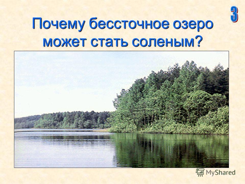 19 Почему бессточное озеро может стать соленым?