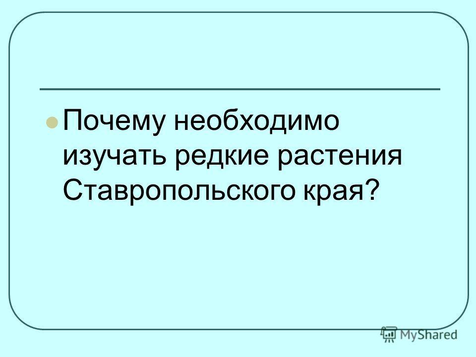 Почему необходимо изучать редкие растения Ставропольского края?