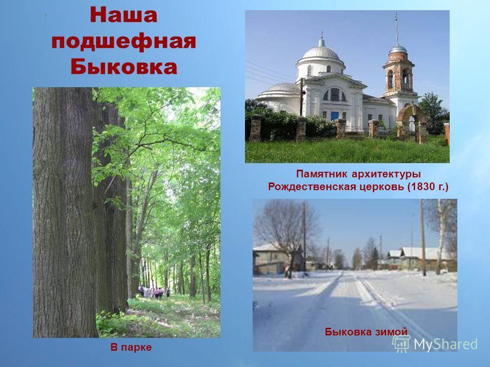 Наша подшефная Быковка Быковка зимой В парке Памятник архитектуры Рождественская церковь (1830 г.)