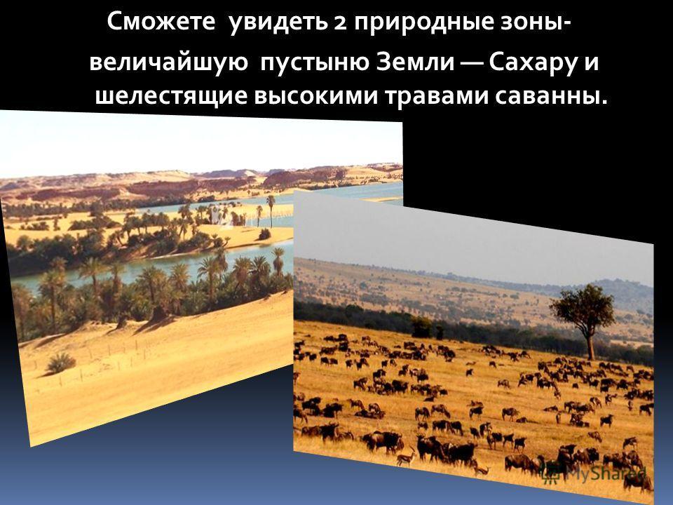Сможете увидеть 2 природные зоны- величайшую пустыню Земли Сахару и шелестящие высокими травами саванны.