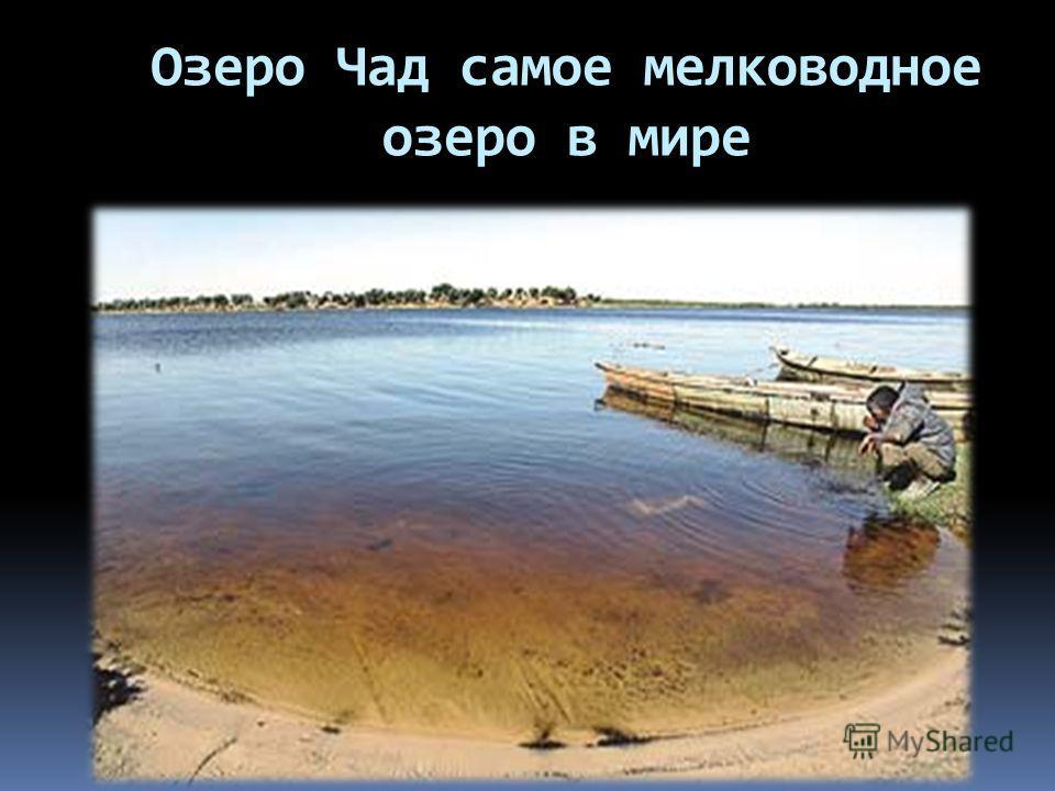 Озеро Чад самое мелководное озеро в мире