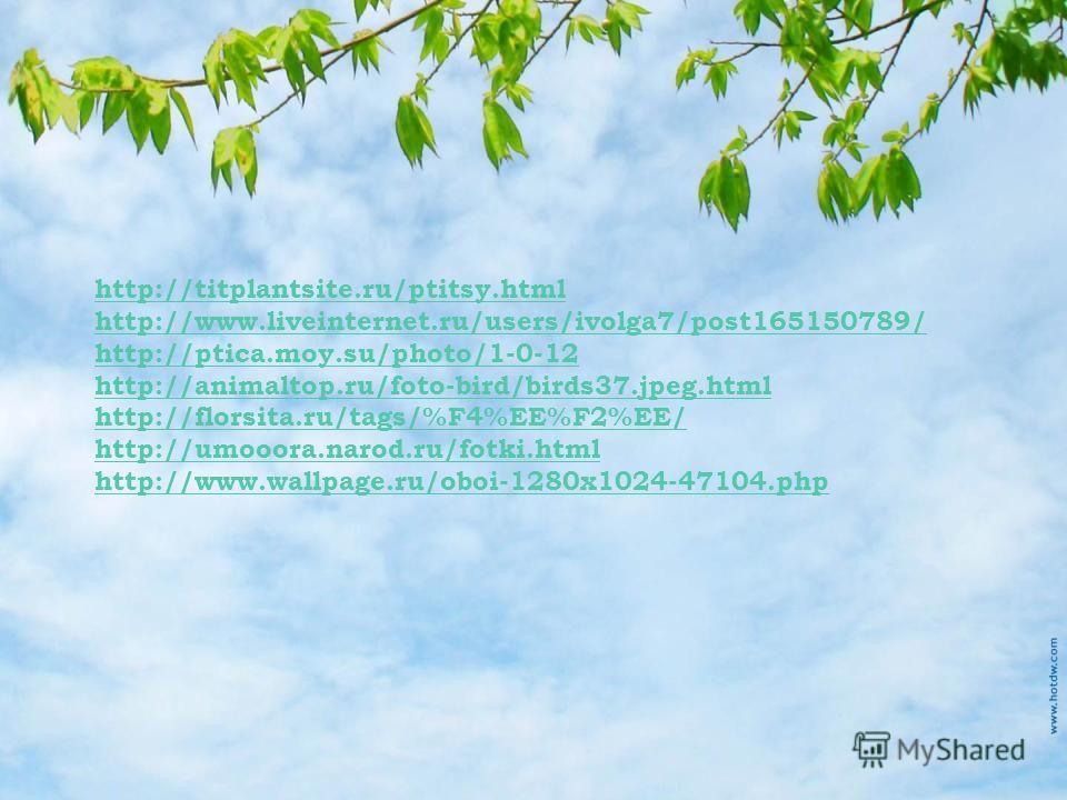 http://titplantsite.ru/ptitsy.html http://www.liveinternet.ru/users/ivolga7/post165150789/ http://ptica.moy.su/photo/1-0-12 http://animaltop.ru/foto-bird/birds37.jpeg.html http://florsita.ru/tags/%F4%EE%F2%EE/ http://umooora.narod.ru/fotki.html http: