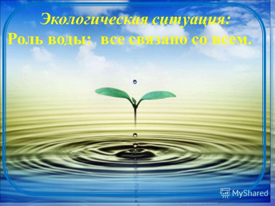 Экологическая ситуация: Роль воды: все связано со всем.