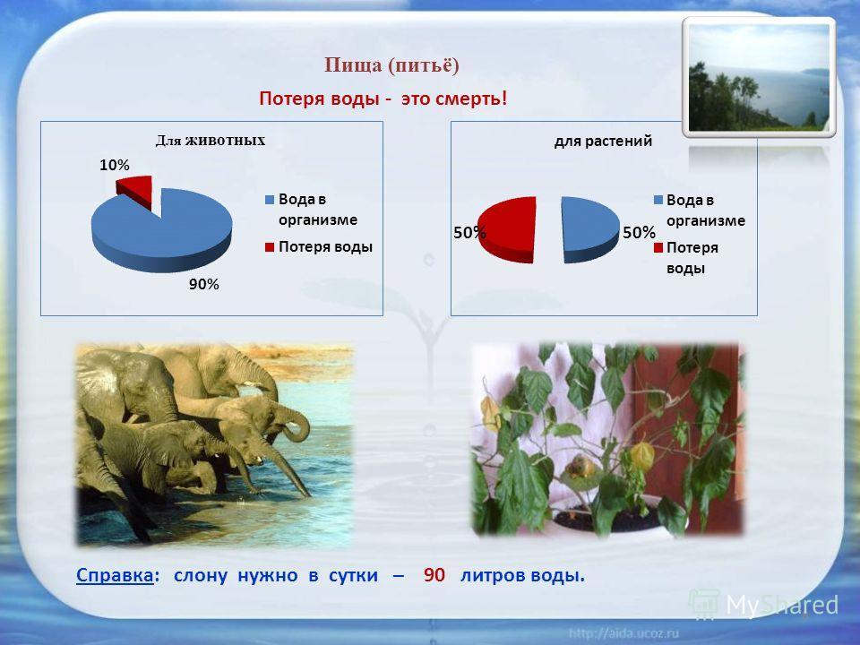 Пища (питьё) Потеря воды - это смерть! Справка: слону нужно в сутки – 90 литров воды. 8