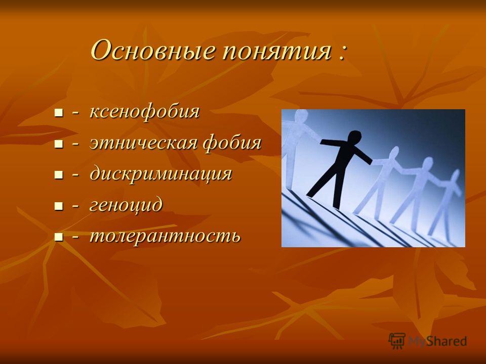 Основные понятия : - ксенофобия - ксенофобия - этническая фобия - этническая фобия - дискриминация - дискриминация - геноцид - геноцид - толерантность - толерантность