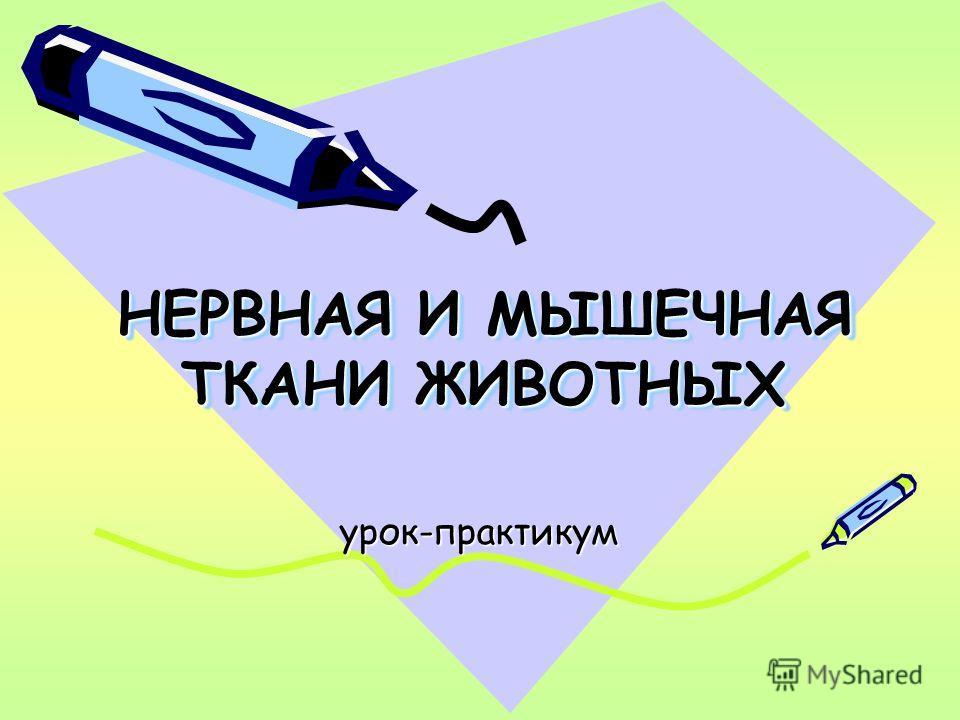 Учебник русского языка 4 класс скачать