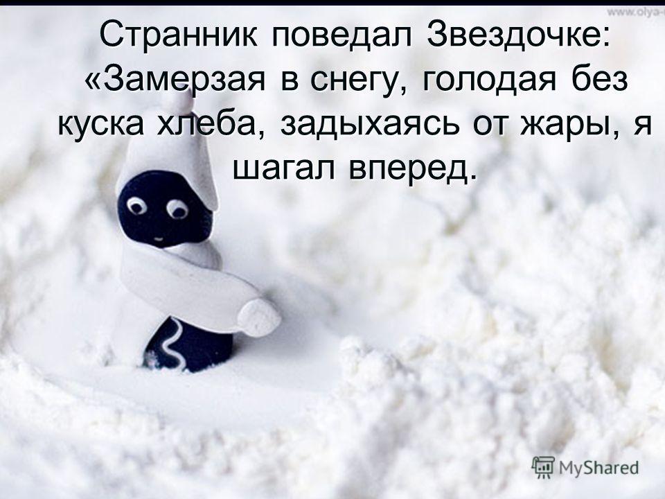 Странник поведал Звездочке: «Замерзая в снегу, голодая без куска хлеба, задыхаясь от жары, я шагал вперед.