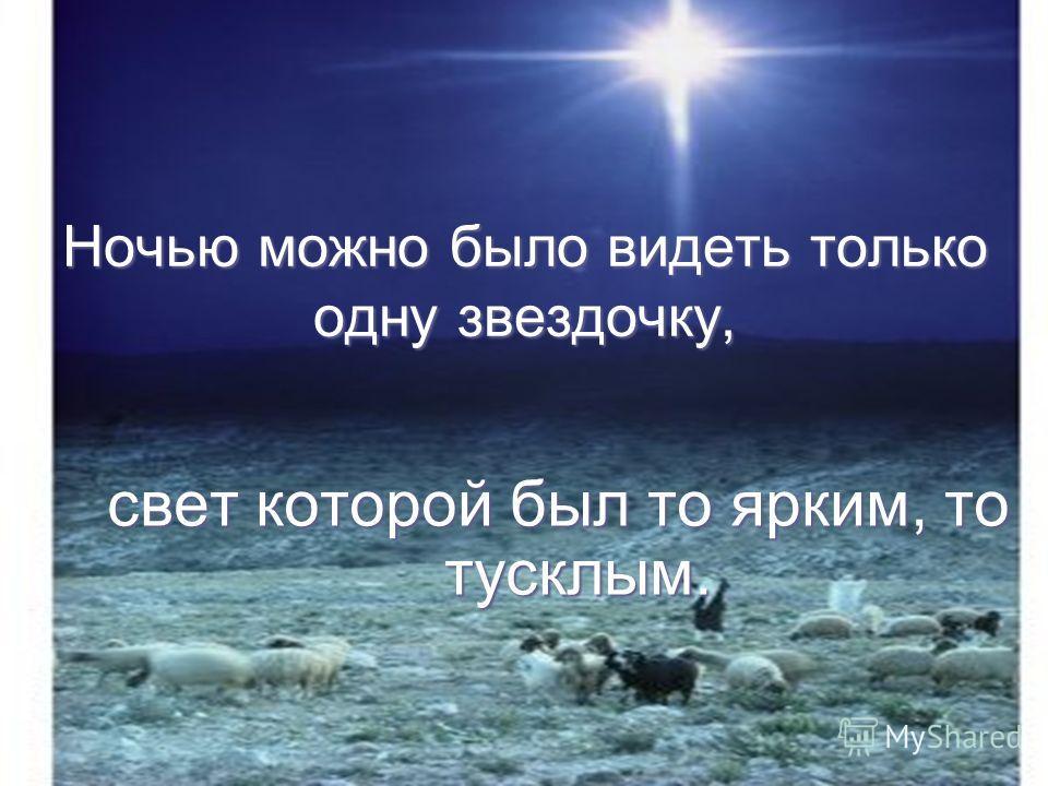Ночью можно было видеть только одну звездочку, свет которой был то ярким, то тусклым.
