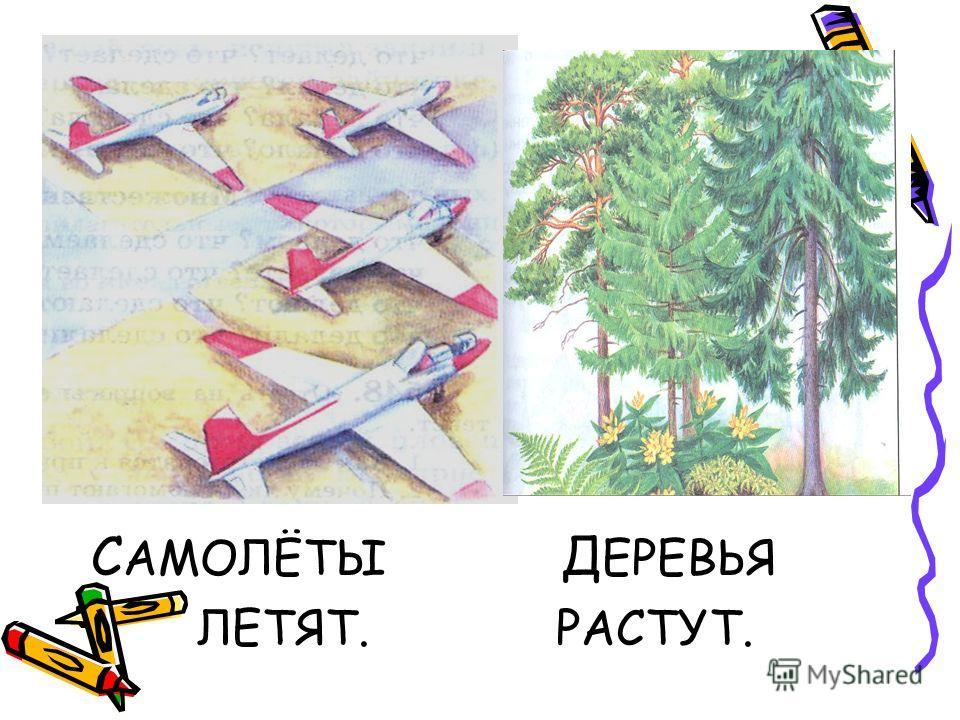 С АМОЛЁТЫ Д ЕРЕВЬЯ ЛЕТЯТ. РАСТУТ.