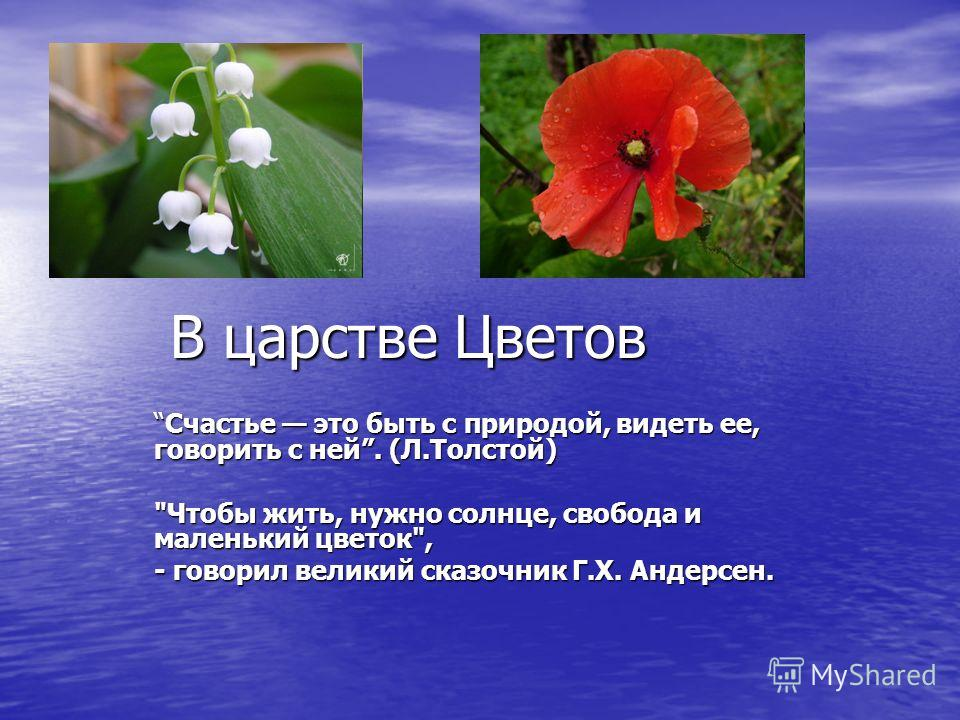В царстве Цветов Счастье это быть с природой, видеть ее, говорить с ней. (Л.Толстой)Счастье это быть с природой, видеть ее, говорить с ней. (Л.Толстой) Чтобы жить, нужно солнце, свобода и маленький цветок, - говорил великий сказочник Г.Х. Андерсен.