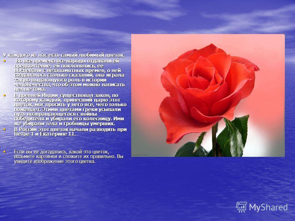 У каждого из нас есть самый любимый цветок. Во все времена все народы отдавали ей предпочтение, ей поклонялись, ее воспевали с незапамятных времен, о ней создавалось столько сказаний, она играла такую выдающуюся роль в истории человечества, что об эт