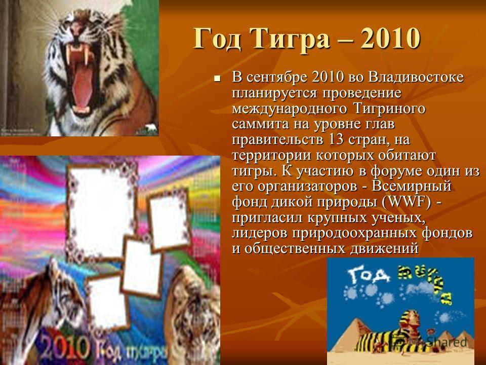Год Тигра – 2010 Год Тигра – 2010 В сентябре 2010 во Владивостоке планируется проведение международного Тигриного саммита на уровне глав правительств 13 стран, на территории которых обитают тигры. К участию в форуме один из его организаторов - Всемир