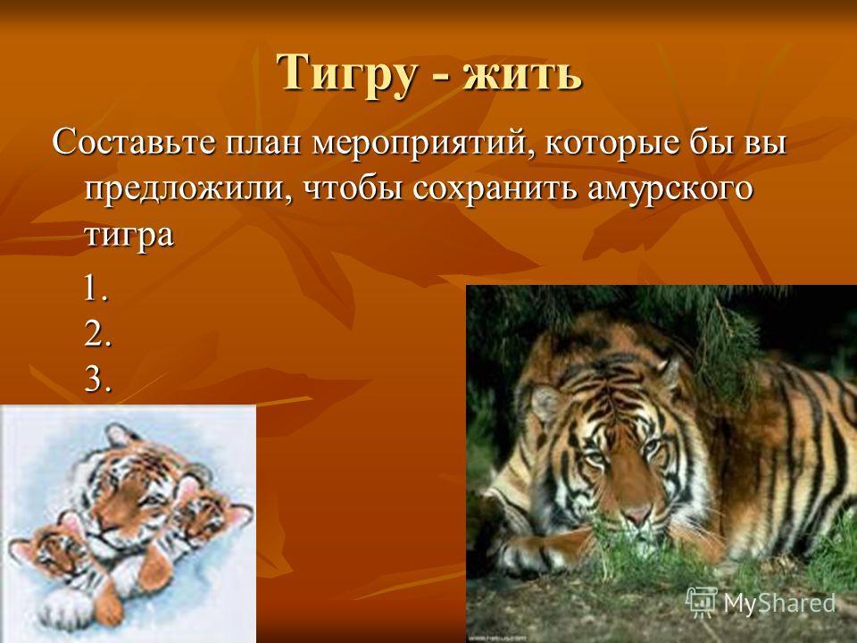 Тигру - жить Составьте план мероприятий, которые бы вы предложили, чтобы сохранить амурского тигра 1. 2. 3.... 1. 2. 3....
