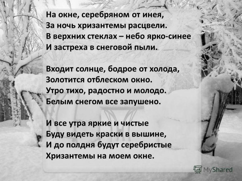 На окне, серебряном от инея, За ночь хризантемы расцвели. В верхних стеклах – небо ярко-синее И застреха в снеговой пыли. Входит солнце, бодрое от холода, Золотится отблеском окно. Утро тихо, радостно и молодо. Белым снегом все запушено. И все утра я