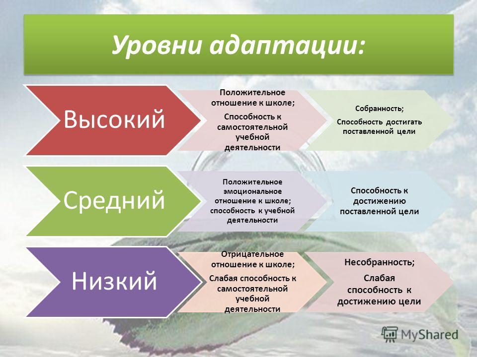 Уровни адаптации: Высокий Положительное отношение к школе; Способность к самостоятельной учебной деятельности Собранность; Способность достигать поставленной цели Средний Положительное эмоциональное отношение к школе; способность к учебной деятельнос