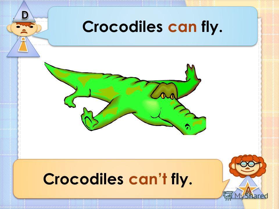 Crocodiles can fly. Crocodiles cant fly.