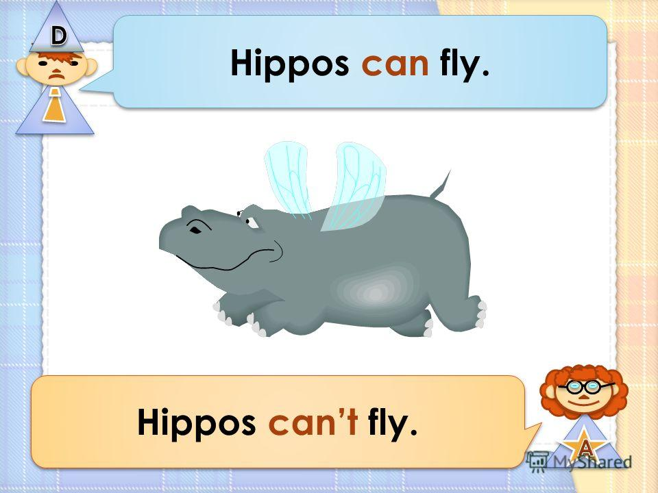 Hippos can fly. Hippos cant fly.