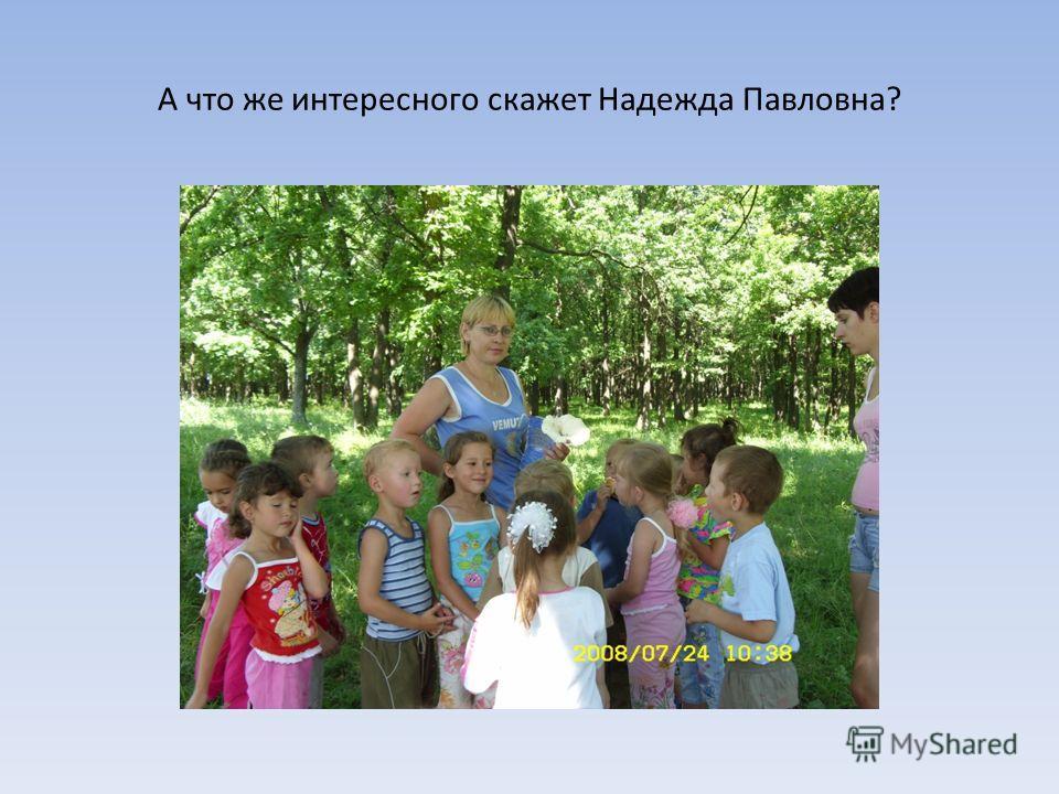 А что же интересного скажет Надежда Павловна?