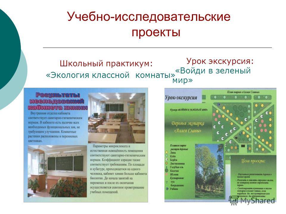 Учебно-исследовательские проекты Школьный практикум: «Экология классной комнаты» Урок экскурсия: «Войди в зеленый мир»