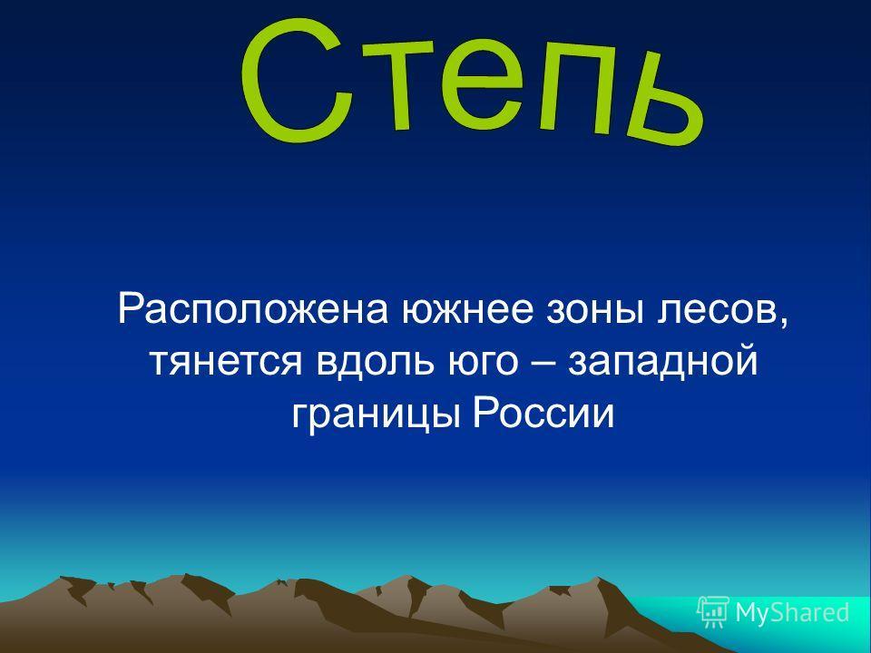 Расположена южнее зоны лесов, тянется вдоль юго – западной границы России
