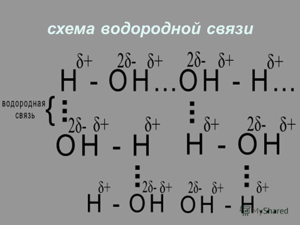 схема водородной связи