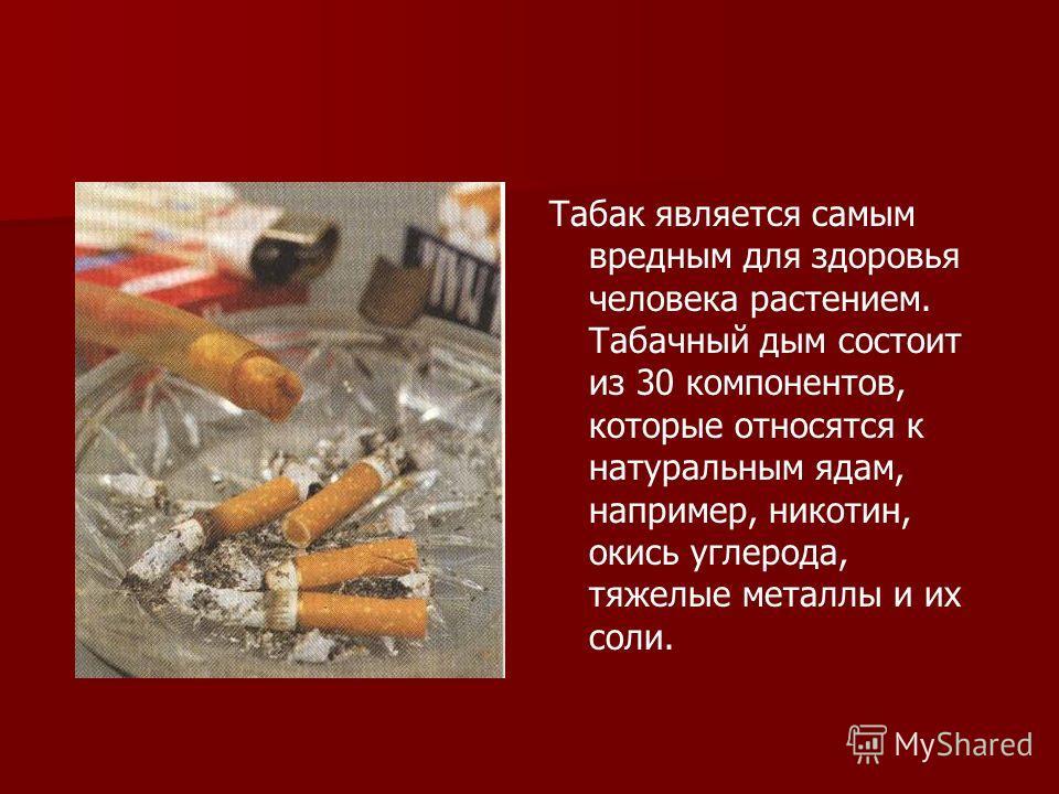 В России сегодня курят 70 миллионов человек, а ежегодно умирает от курения 400 000. 10% средств, расходуемых на здравоохранение, идут на борьбу с болезнями, связанными с хроническим отравлением табачным дымом.