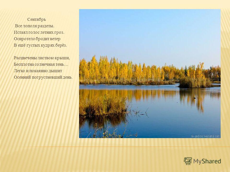 Сентябрь Все тополя раздеты. Истаял голос летних гроз. Осиротело бродит ветер В ещё густых кудрях берёз. Расцвечены листвою крыши, Бесплотна солнечная тень… Легко и покаянно дышит Осенний погрустневший день.