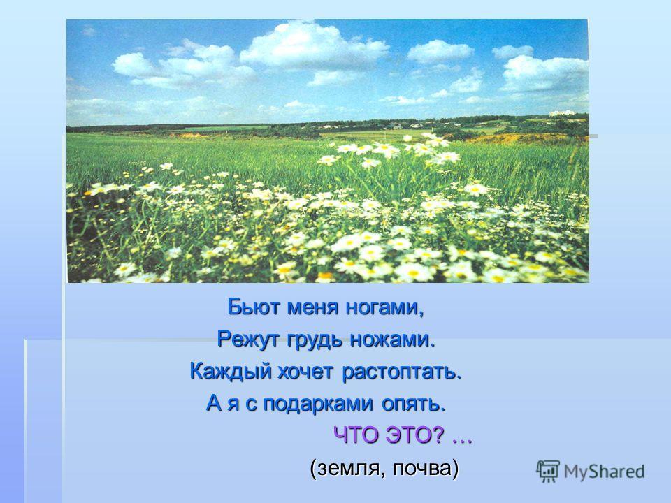 Очень добродушная, Я мягкая, послушная, Но когда захочу Даже камень источу. ЧТО ЭТО? … (вода)