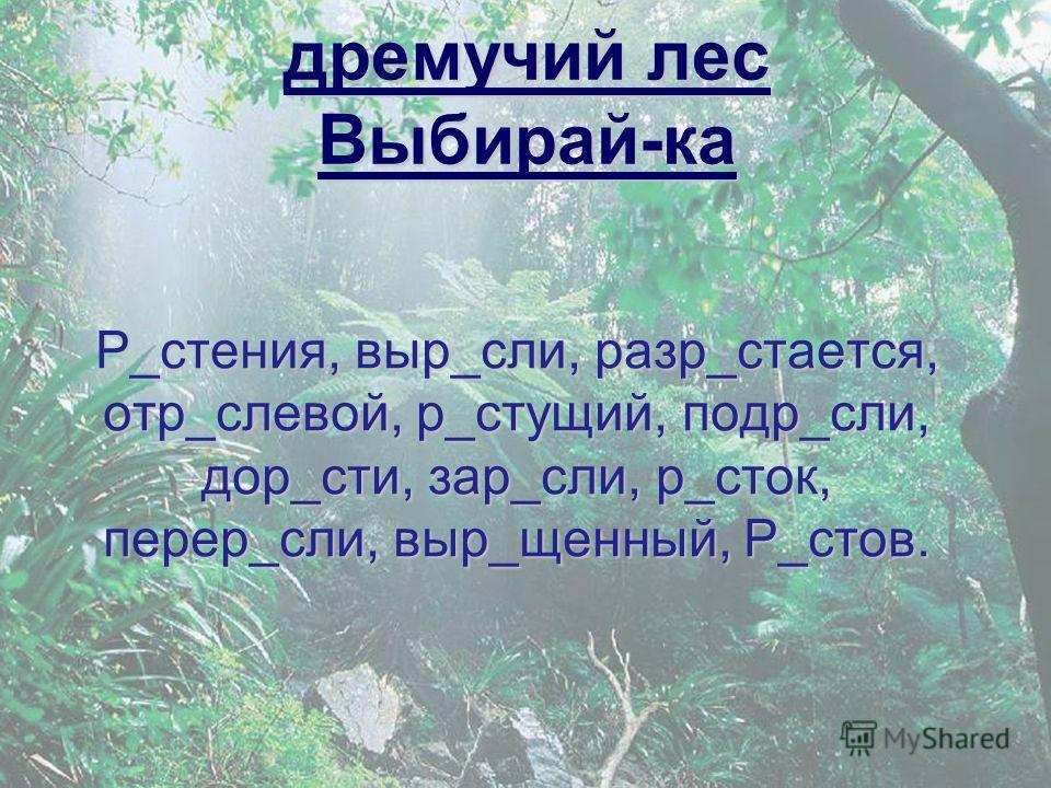 дремучий лес Выбирай-ка Р_стения, выр_сли, разр_стается, отр_слевой, р_стущий, подр_сли, дор_сти, зар_сли, р_сток, перер_сли, выр_щенный, Р_стов.